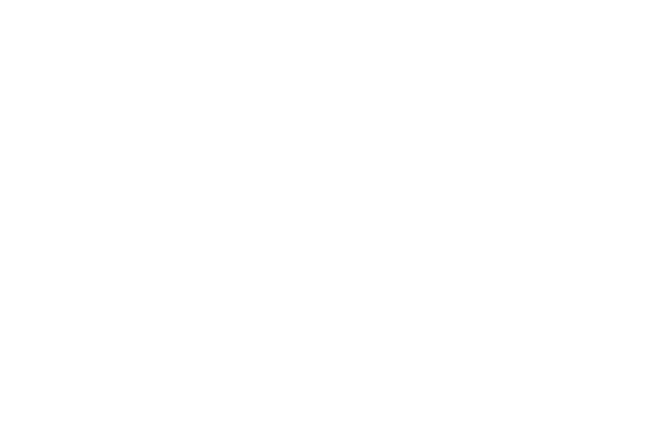 ROGUE STORIES - MINDZAI